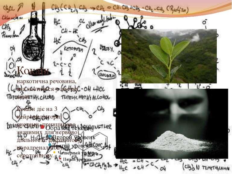 Кокаїн – наркотична речовина, яка міститься у листях коки. Кокаїн діє на 3 не...