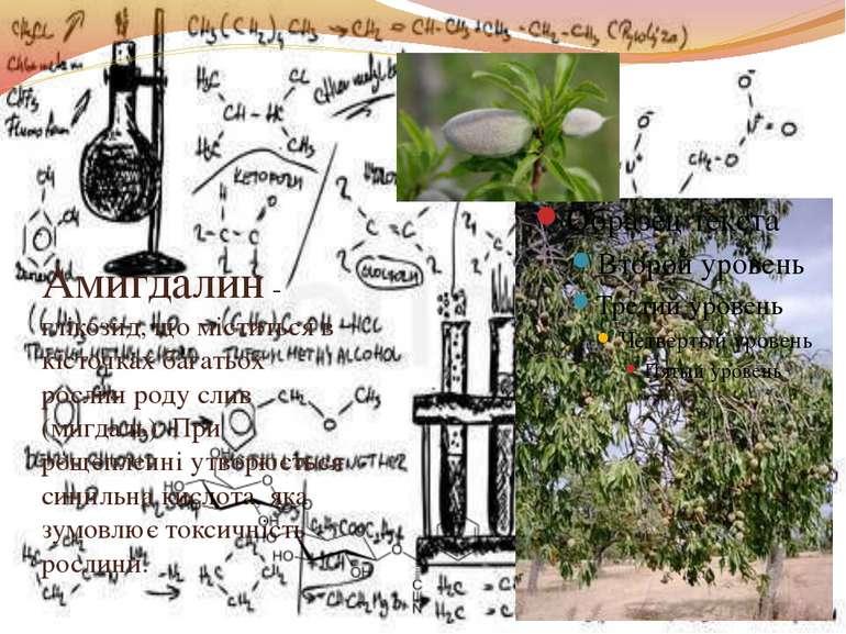 Амигдалин - глікозид, що міститься в кісточках багатьох рослин роду слив (миг...