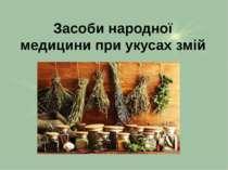 Засоби народної медицини при укусах змій