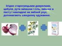 Згідно старогрецьким джерелами, цибуля, рута запашна і сіль, змішані в пасту ...