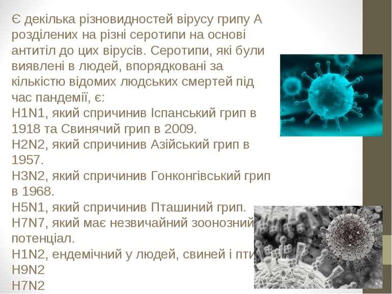Є декілька різновидностей вірусу грипу А розділених на різні серотипи на осно...