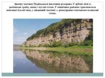 Значну частину Подільської височини розорано. Єдубовіліси (з домішкоюграба...