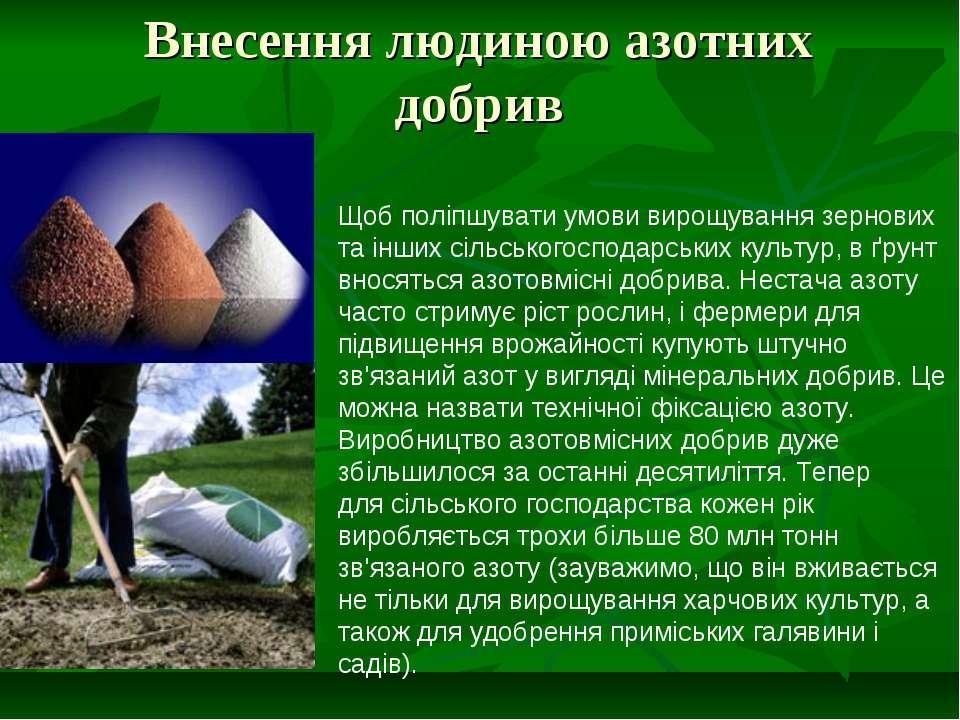 Внесення людиною азотних добрив Щоб поліпшувати умови вирощування зернових та...