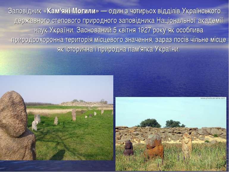 Заповідник «Кам'яні Могили» — один з чотирьох відділів Украïнського державног...
