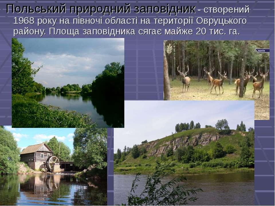 Польський природний заповідник - створений 1968 року на півночі області на те...