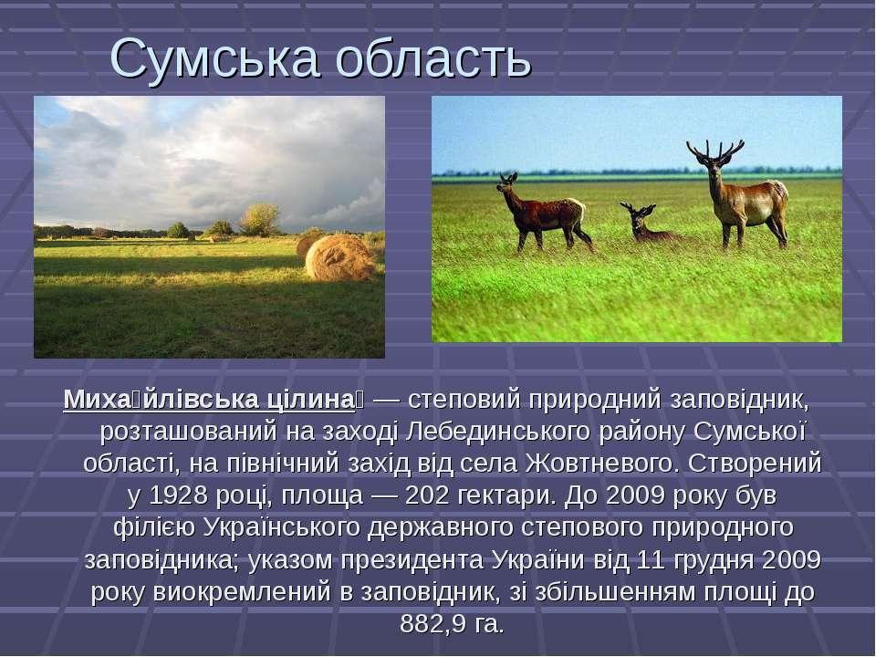 Сумська область Миха йлівська цілина — степовий природний заповідник, розташ...