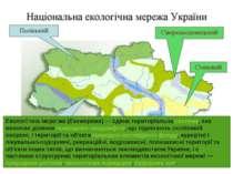 Екологі чна мере жа(Екомережа)— єдина територіальнасистема, яка включає ді...