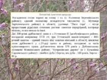 Ботанічні пам'ятки природи Насадження сосни чорної на площі 1 га. (с. Калени...