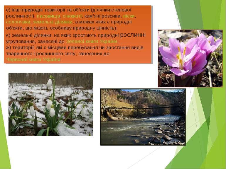 є) інші природні території та об'єкти (ділянки степової рослинності,пасовища...