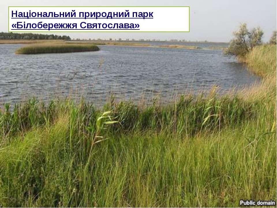Національний природний парк «Білобережжя Святослава»