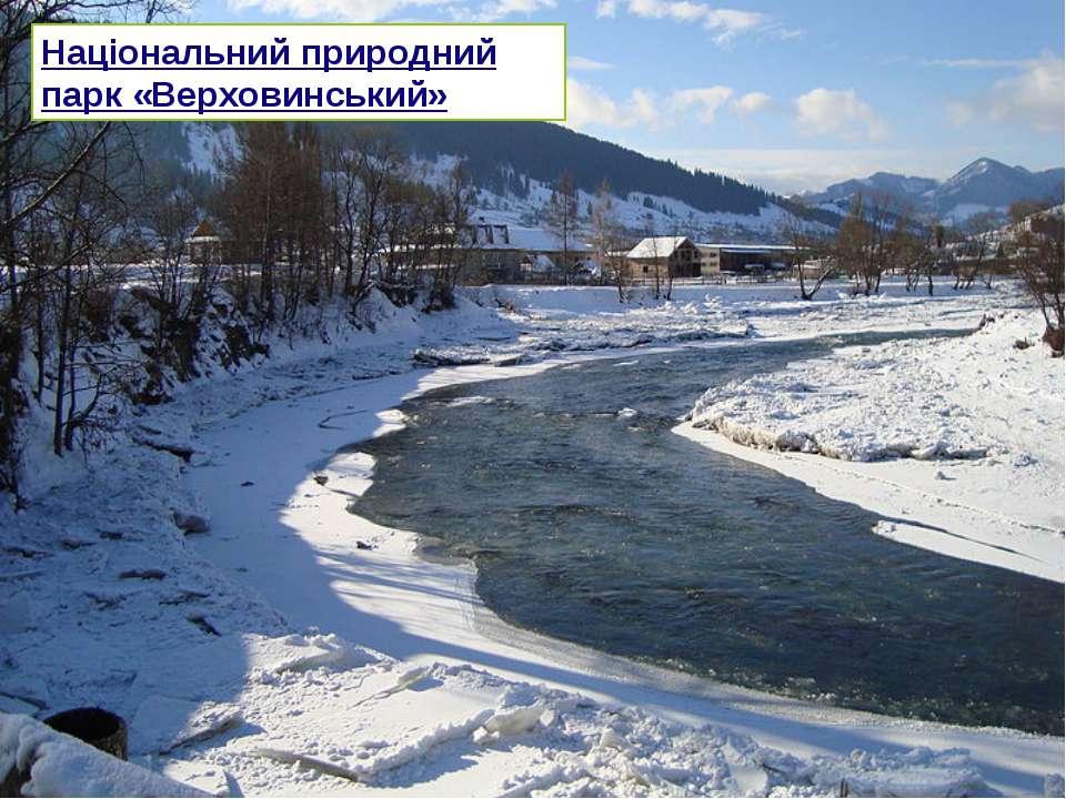 Національний природний парк «Верховинський»