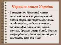 Червона книга України З тварин до Червоної книги занесені лосось чорноморськи...
