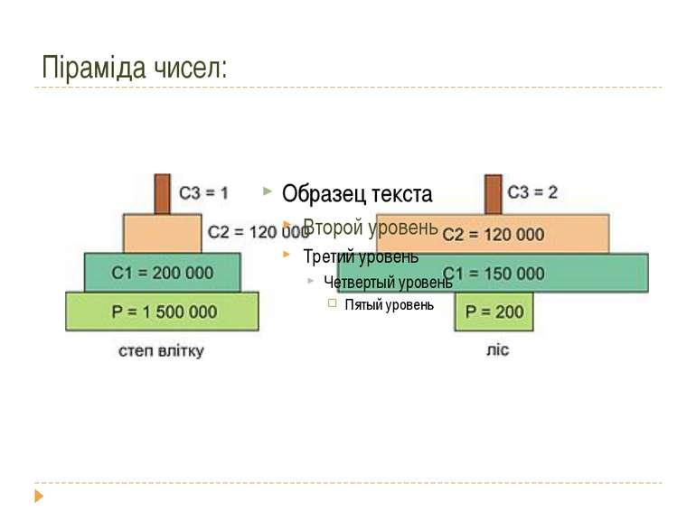 Піраміда чисел: