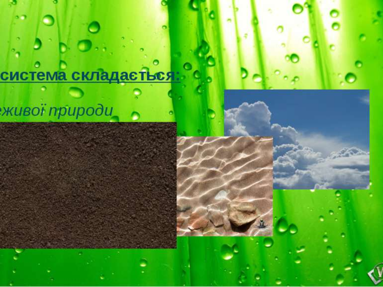 Екосистема складається: 1.Неживої природи