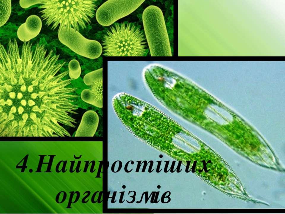 4.Найпростіших організмів