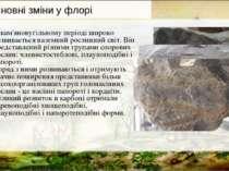 У кам'яновугільному періоді широко розвивається наземний рослинний світ. Він ...