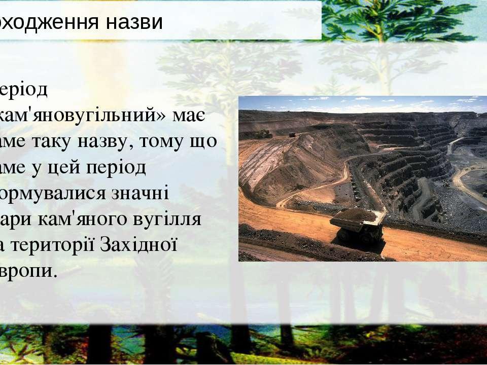 Період «кам'яновугільний» має саме таку назву, тому що саме у цей період форм...