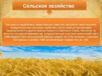 Белоруссия выделялась среди бывших советских республик самой высокой продукти...