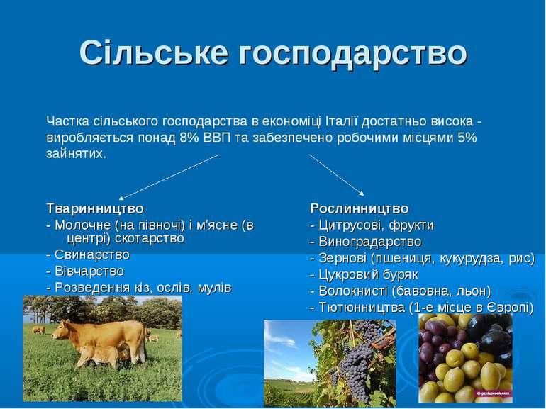 Сільське господарство Тваринництво - Молочне (на півночі) і м'ясне (в центрі)...