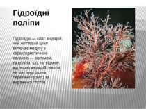 Гідроїдні поліпи Гідро їдні— класкнідарій, чий життєвий цикл включаємедузу...
