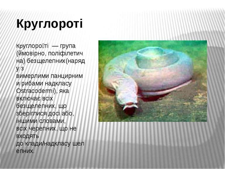 Круглороті Круглоро ті— група (ймовірно,поліфілетична)безщелепних(наряду ...