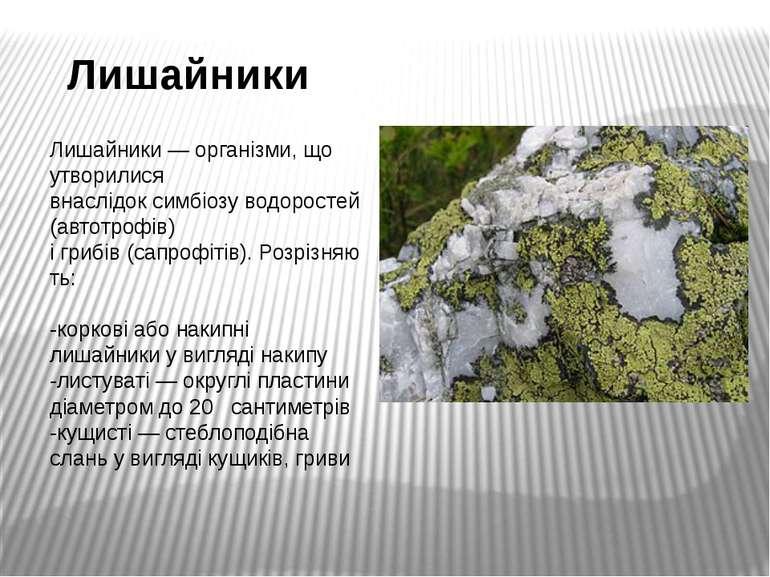 Лишайники Лишайники—організми, що утворилися внаслідоксимбіозуводоростей(...