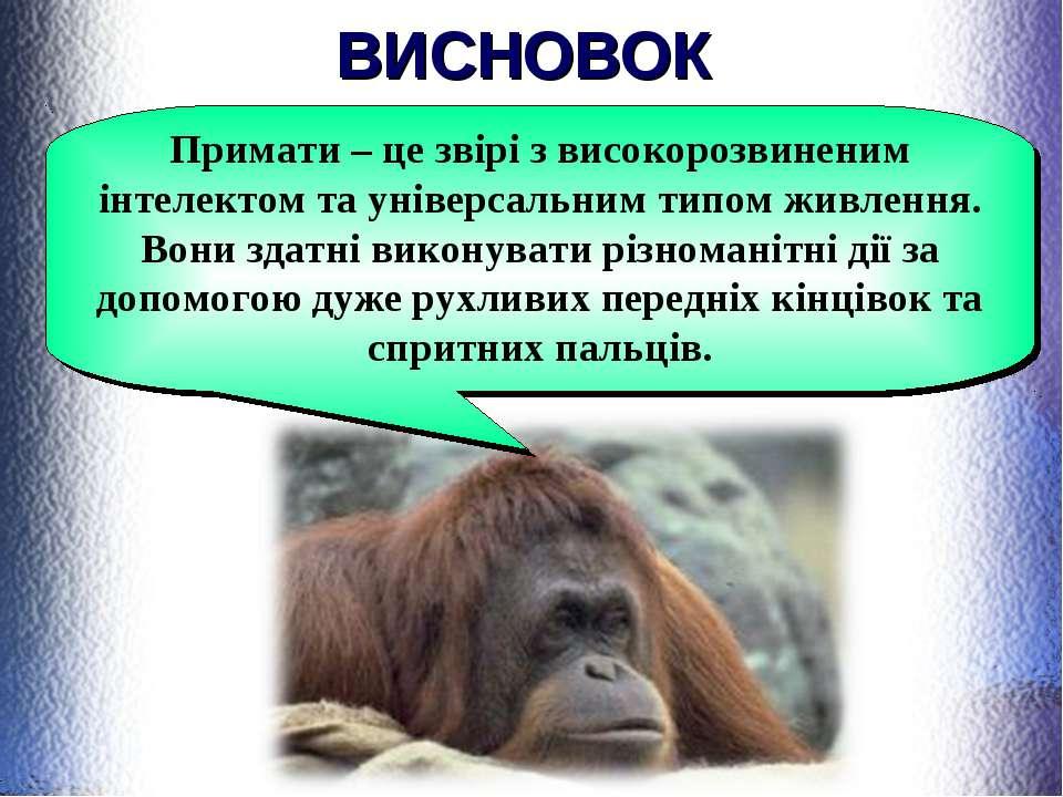 ВИСНОВОК Примати – це звірі з високорозвиненим інтелектом та універсальним ти...