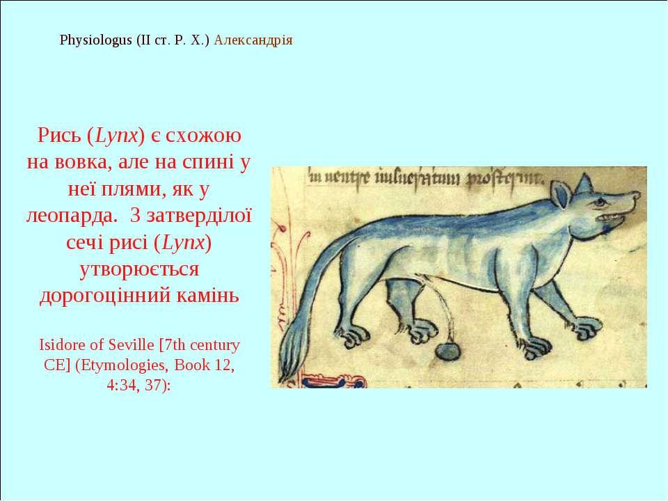 Physiologus (II ст. Р. Х.) Александрія Рись (Lynx) є схожою на вовка, але на ...