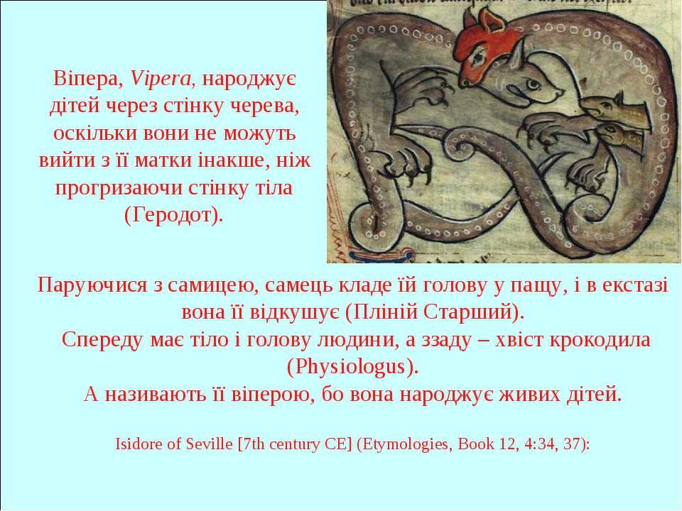 Віпера, Vipera, народжує дітей через стінку черева, оскільки вони не можуть в...