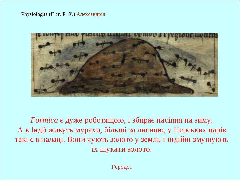 Physiologus (II ст. Р. Х.) Александрія Formica є дуже роботящою, і збирає нас...