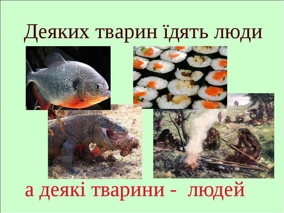 а деякі тварини - людей Деяких тварин їдять люди