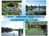Ставки – невеликі водосховища (завдовжки до 1,5 км).