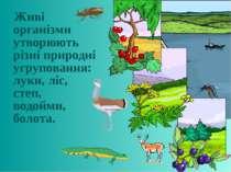 Живі організми утворюють різні природні угруповання: луки, ліс, степ, водойми...