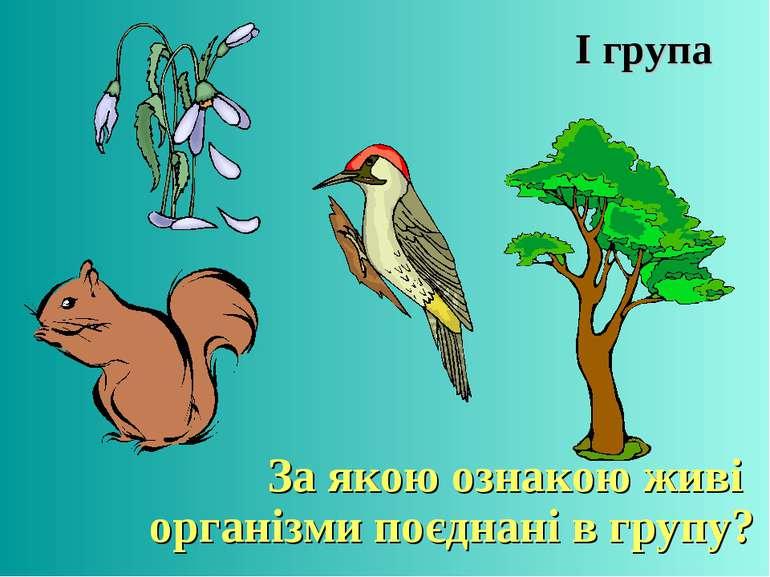 І група За якою ознакою живі організми поєднані в групу?