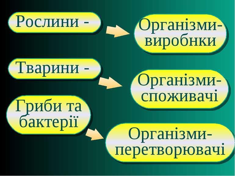 Організми- перетворювачі Організми- споживачі Організми- виробнки Рослини - О...