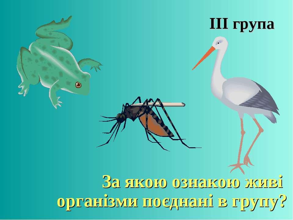 ІІІ група За якою ознакою живі організми поєднані в групу?
