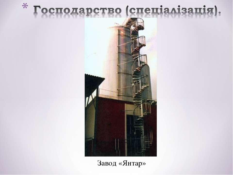 Завод «Янтар»