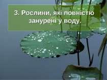 3. Рослини, які повністю занурені у воду.