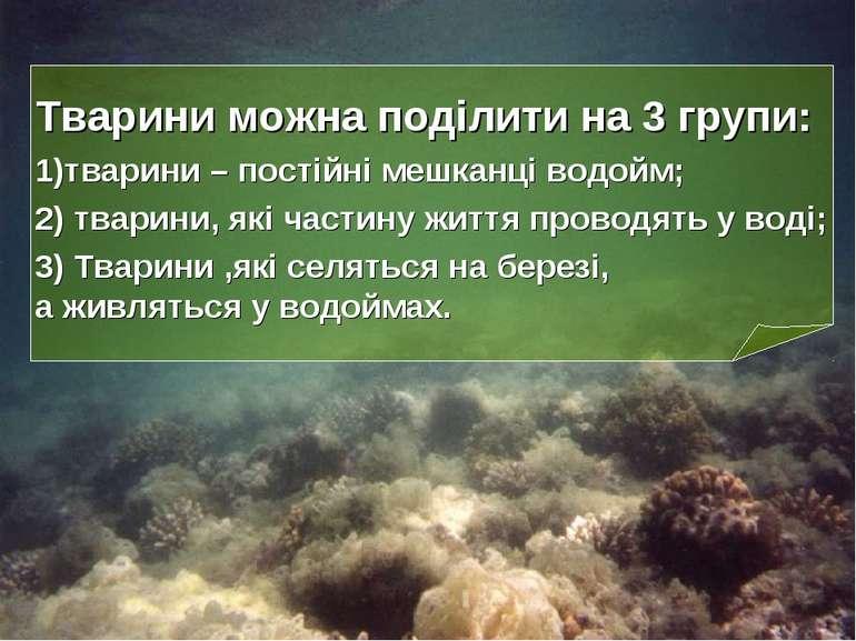 Тварини можна поділити на 3 групи: 1)тварини – постійні мешканці водойм; 2) т...