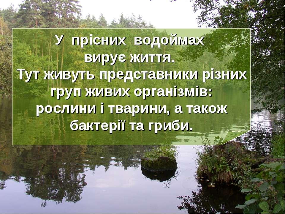 У прісних водоймах вирує життя. Тут живуть представники різних груп живих орг...
