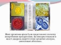 Живі організми архея були представлені спочатку анаеробними прокаріотами, які...