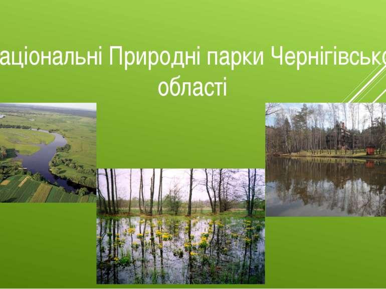 Мезинський національний природний парк національний природний парк в Україні,...