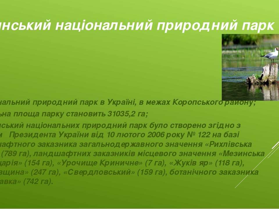 Територія Мезинського національного природного парку належить до Новгород-Сів...