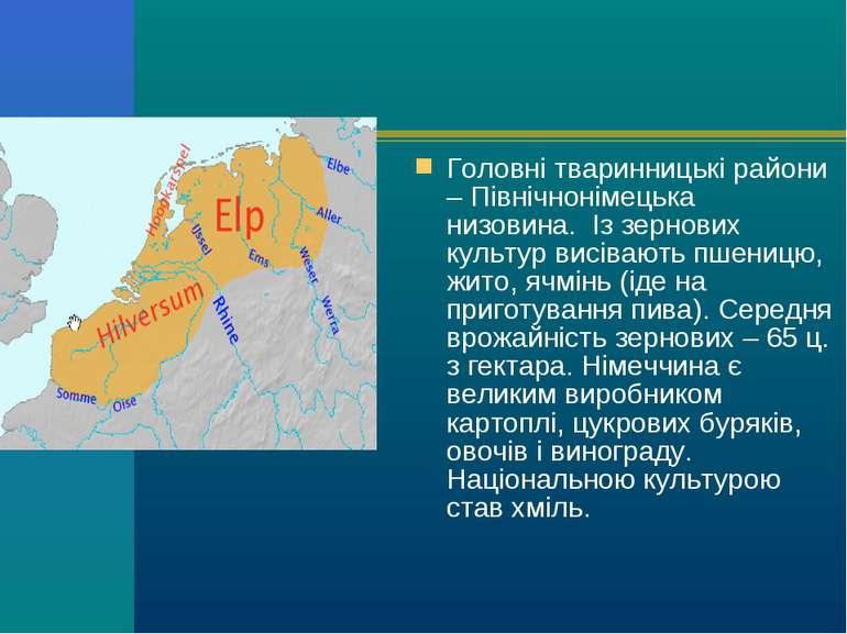 Головнітваринницькі райони – Північнонімецька низовина. Із зернових культур...