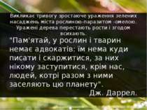 """""""Пам'ятай, у рослин і тварин немає адвокатів: їм нема куди писати і скаржитис..."""