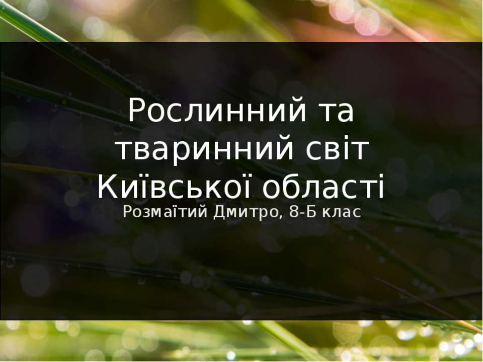 Розмаїтий Дмитро, 8-Б клас Рослинний та тваринний світ Київської області