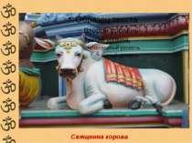 Священна корова