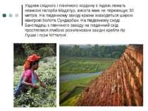 Уздовж східного і північногокордонуз Індією лежать невисокіпагорби Мадхпур...