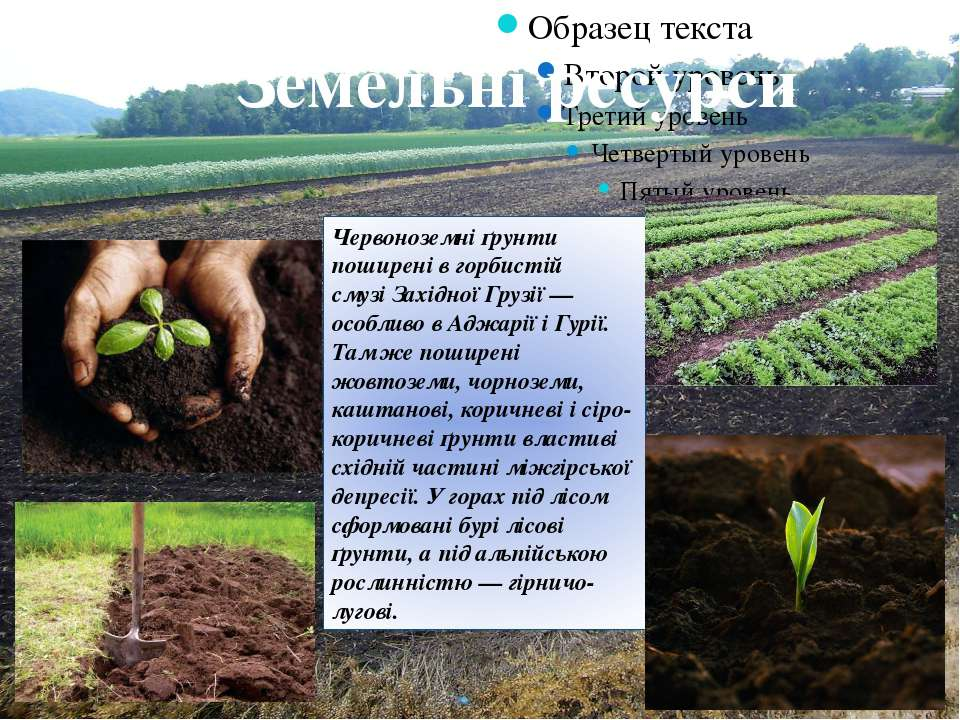 Земельні ресурси Червоноземні ґрунти поширені в горбистій смузіЗахідної Груз...