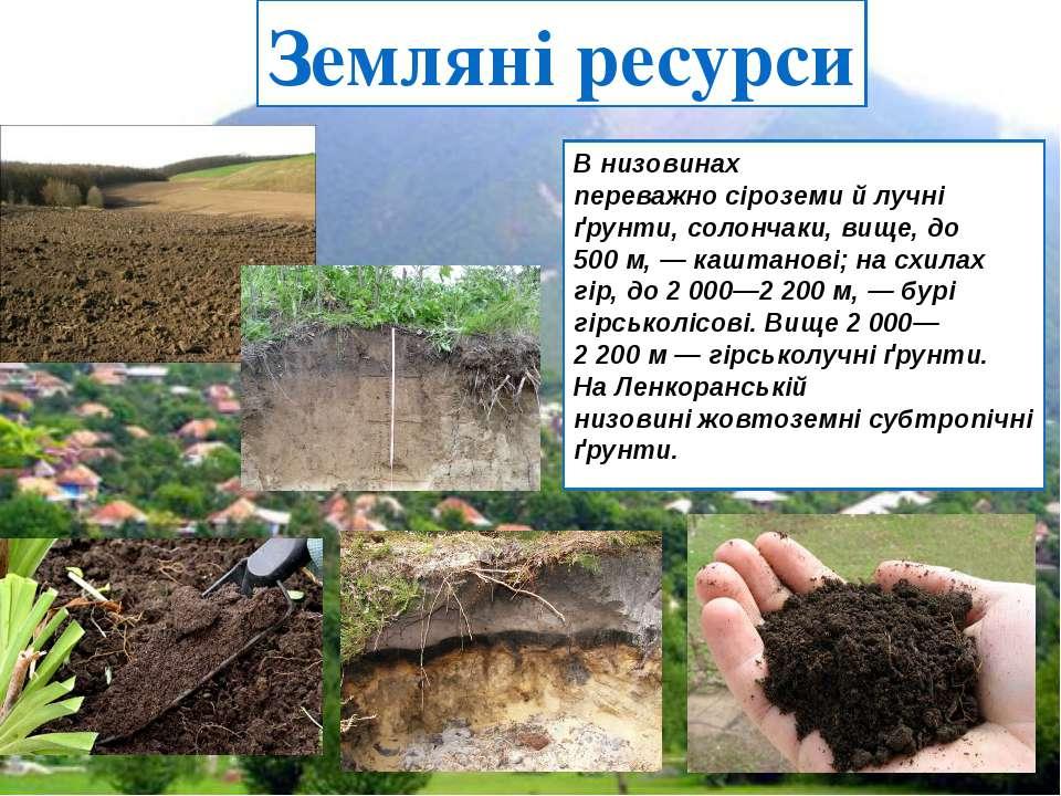 Земляні ресурси В низовинах переважносіроземийлучні ґрунти,солончаки, вищ...